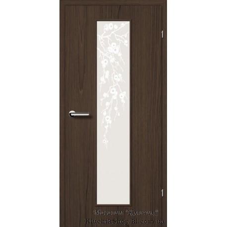 Двері Brama 2.48 / Лінія дерева / Декор горіх волоський