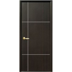Двері Ніка Silver / Суцільні з гравіюванням