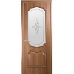 Двері Рока / Скло сатин та мал. Р1