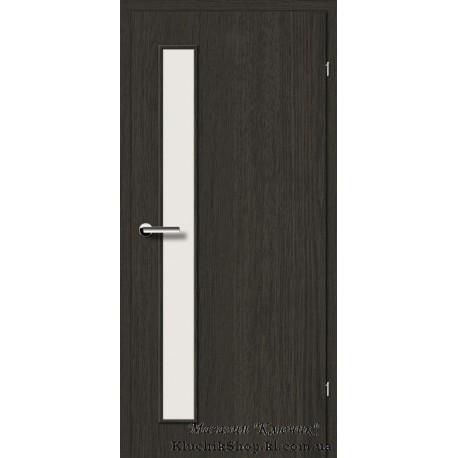 Двері Brama 2.2 / Лінія дерева / Декор дуб антрацит