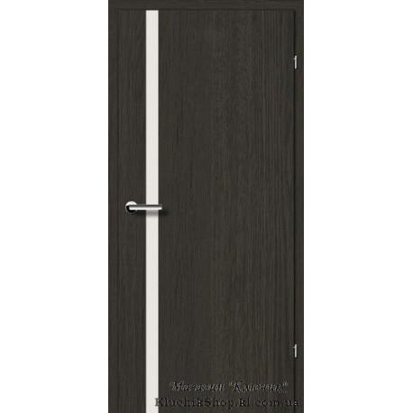 Двері Brama 2.71 / Лінія дерева / Декор дуб антрацит