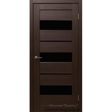 Двері Alegra Ag -12 / Чорне скло